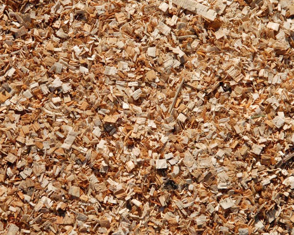 Economy Wood Chips Timber Ridge Wood Productstimber